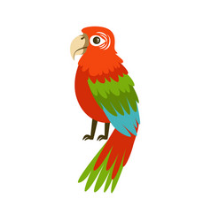 Colorful macaw parrot colorful vector
