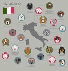 dogs by country of origin italian dog breeds vector image
