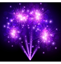 Festive purple firework background vector