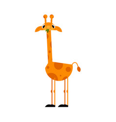 Funny giraffe cartoon character with long neck vector