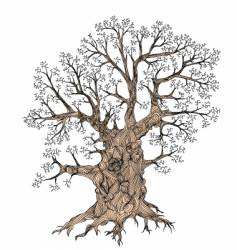 Gnarled tree vector