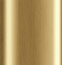 gold brushed metal 1401 vector image