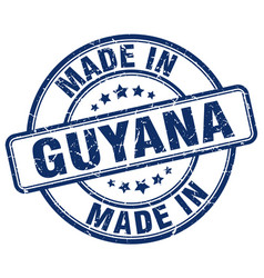 made in guyana vector image vector image