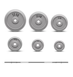 realistic 3d detailed barbell with plates set vector image