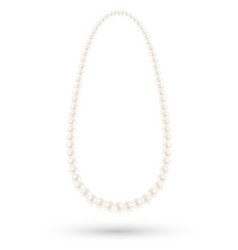 white pearl necklace on a white background vector image