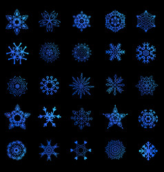 a set of snowflakes vector image