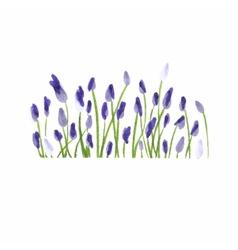 Lavender border Watercolor hand drawn floral vector image
