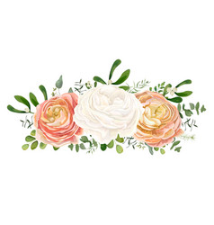 Floral bouquet with white pink peach ranunculus vector