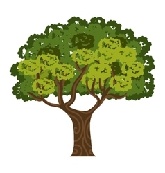 tree isolated design vector image