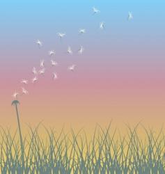 Dandelion sunset vector
