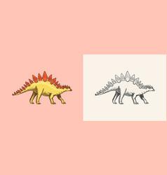 Dinosaur stegosaurus fossils prehistoric vector