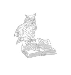 educational an owl sitting on open vector image