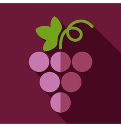 Grapes flat icon with long shadow vector image