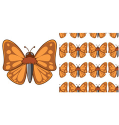 Seamless background design with brown moth vector