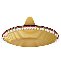 Straw mexican hat with wide brim and decorations vector