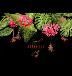 Tropical flower border vector
