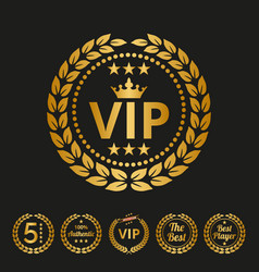 vip label on black background vector image