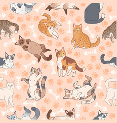 Cat pattern seamless texture with cute multicolor vector