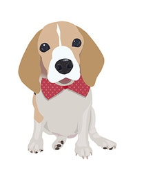 Cute Queen Elizabeth Pocket beagle vector