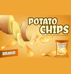 promotion banner with crispy potato chips vector image