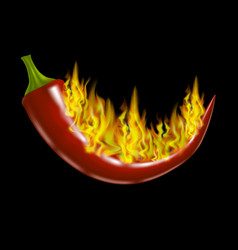 Realistic red hot pepper and fire flames vector
