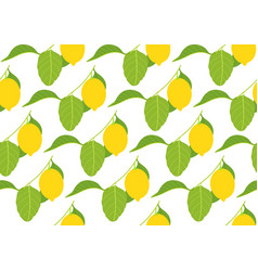 seamless pattern with lemons on white background vector image
