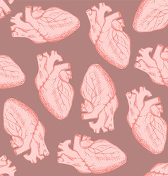 Sketch human heart in vintage style vector image