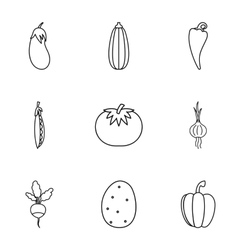 Types of vegetables icons set outline style vector image