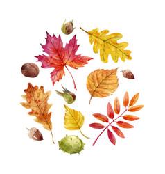 watercolor fall leaves set vector image