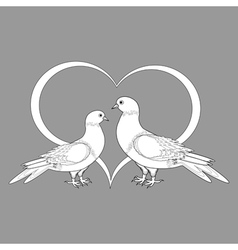 A monochrome sketch of two doves and a heart vector image vector image