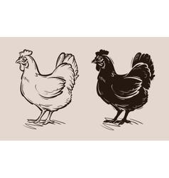 chicken logo farm poultry or hen fowl vector image