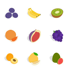 Fresh fruit icons isometric 3d style vector