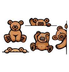 funny brown bears vector image