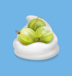 Gooseberry in yogurt fruit vector