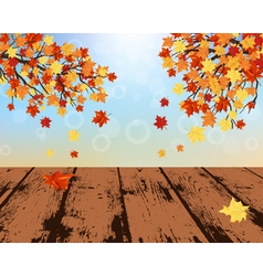 Maple fall vector image