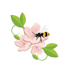 Bee on flower vector image