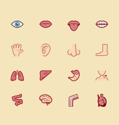 body element color icon set 1 vector image