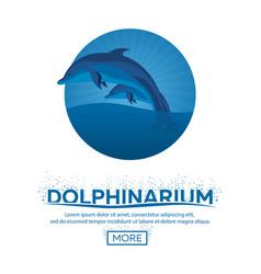 Dolphinarium dolphin show banner ticket vector