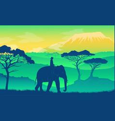elephant in african savanna wild acacia vector image