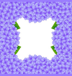 Purple hydrangea flower border vector
