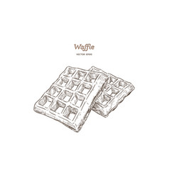 Waffles hand draw sketch vector