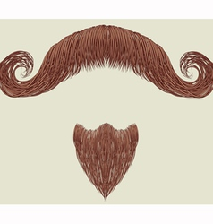 Mustache and beard vector