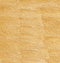 Gold acrylic hand drawn background vector image