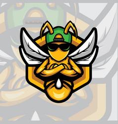 bee logo mascot design sport with modern vector image