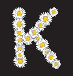 bele rade K resize vector image