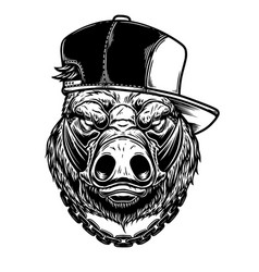 head boar in baseball cap in vintage vector image