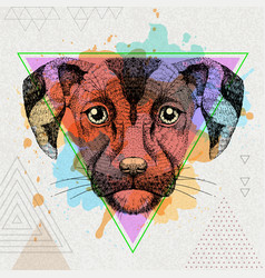 hipster animal dog on artistic polygon watercolor vector image