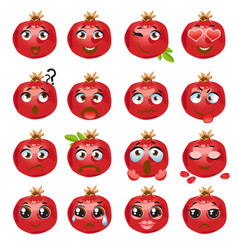 Pomegranate emoji emoticon expression vector