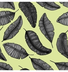 Seamless hand drawn pattern with banana leaves vector image vector image