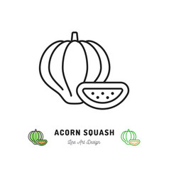acorn squash icon vegetables logo thin line art vector image
